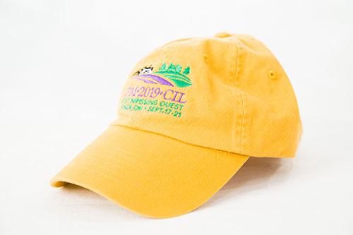 IPM Ball Cap